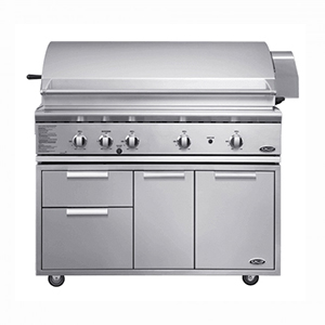 Fisher & Paykel DCS Grill